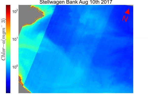 Initial raw satellite imagery of chlorophyll within Stellwagen Bank National Marine Sanctuary.  Image courtesy of NASA Goddard Space Flight Center.